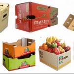 dus / box buah